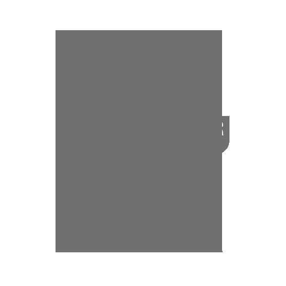BIST-ICIQ